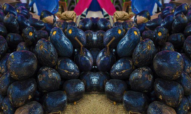 Quand l'exotisme du safou séduit le goût des voyageursd'Afrique, tourisme et gastronomie font «bon appétit».